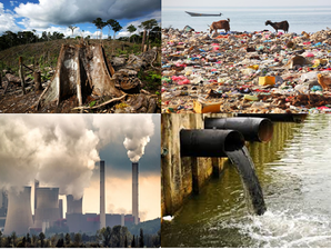 Environmental degradation and sustainable development