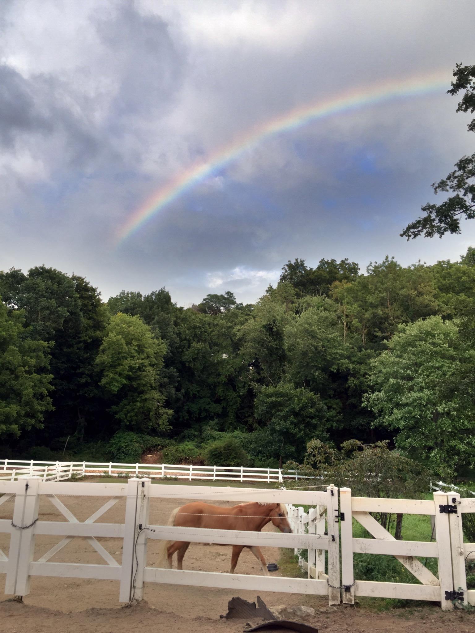 RainbowpicturesummerIII2016