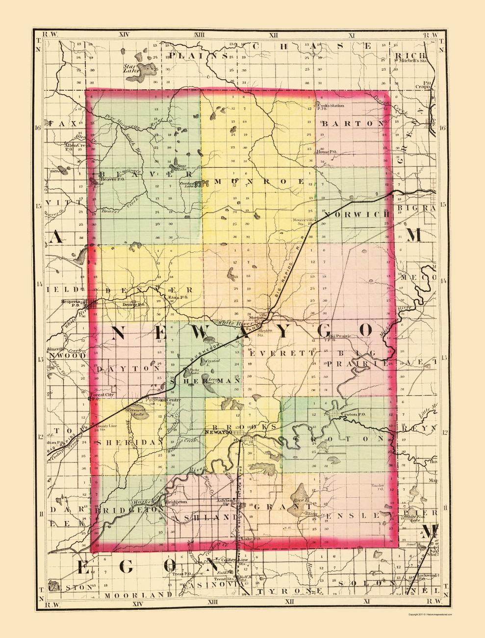 Newaygo County, 1873