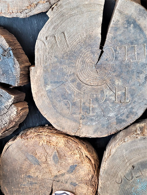 historic log rounds.jpg