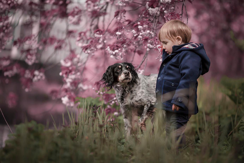 Menino em campo de flores com cachorro