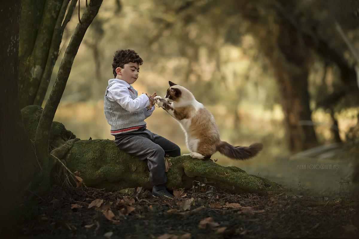 Menino brincando com gato no sítio