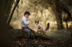 menino brincando com gatinho