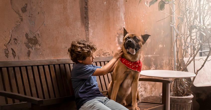 menino brincando com cachorro.jpg