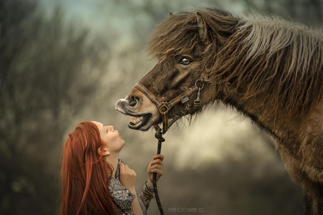 mulher e cavalo islândes