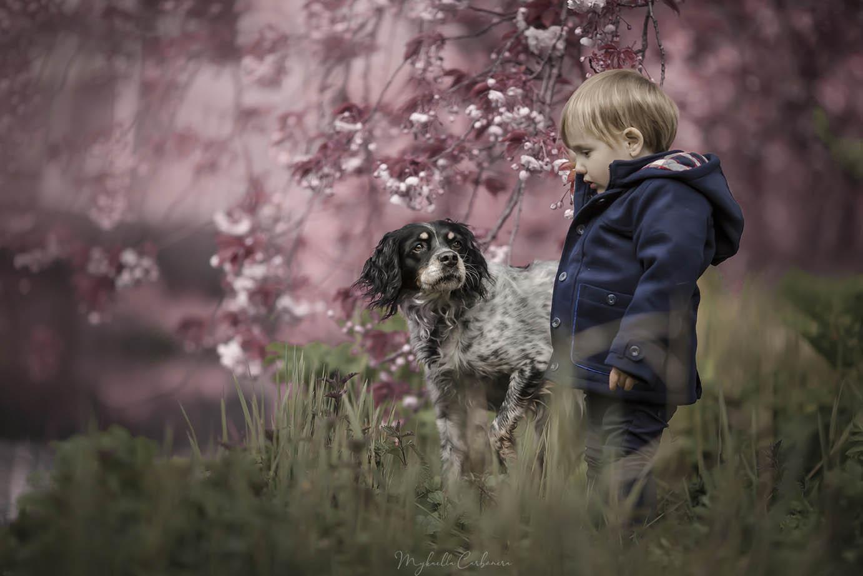 Menino e cachorro na cerejeira