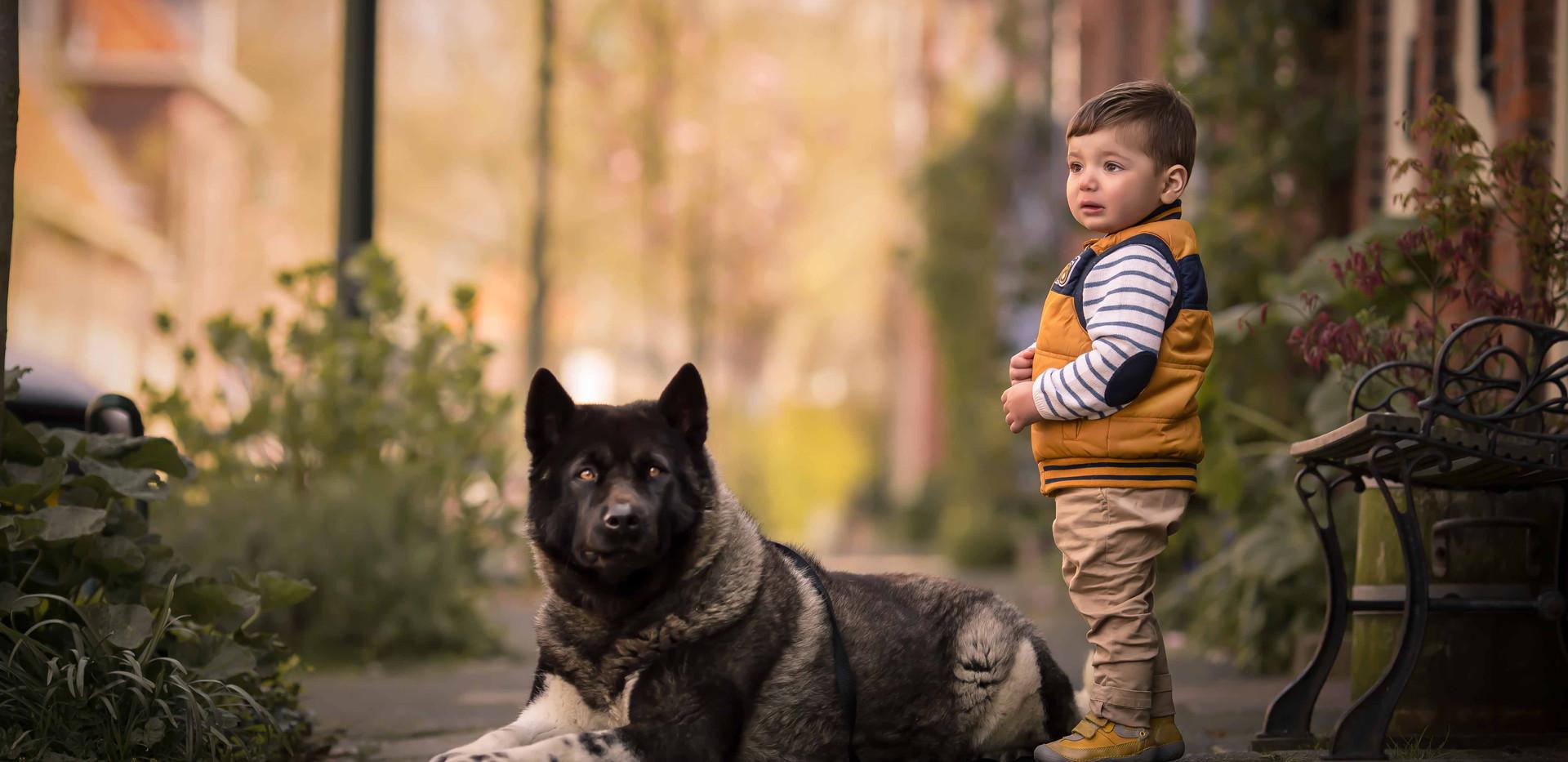 Criança com cachorro akita americano na rua