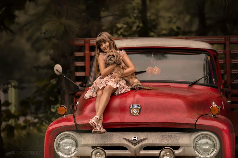 menina e lhasa apso em carro vintage ver