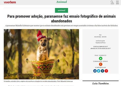 fotografia animais adoção gazeta do povo