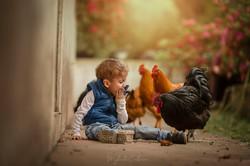 menino brincando no sítio com galinha