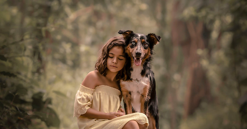 Menina abraçando cachorro border collie