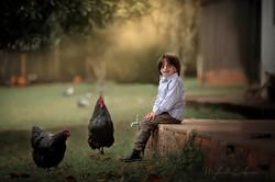 criança brincando com galinhas