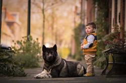 menino na cidade com cachorro Akita amer