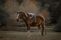 Menino deitado no cavalo