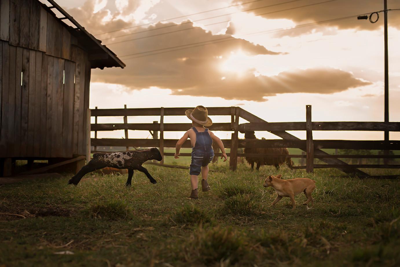 Menino correndo atrás de carneiro no sítio com seu cachorro