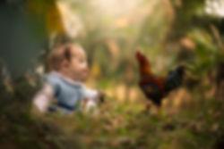 bebê_brincando_na_natureza_com_galinha.j