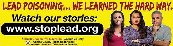 Lead Documentary Banner.jpg