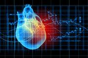Transformity Health advices on Cardiovascular Disease