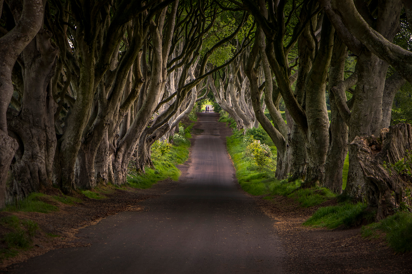Claire Leblanc-Medieval Walk