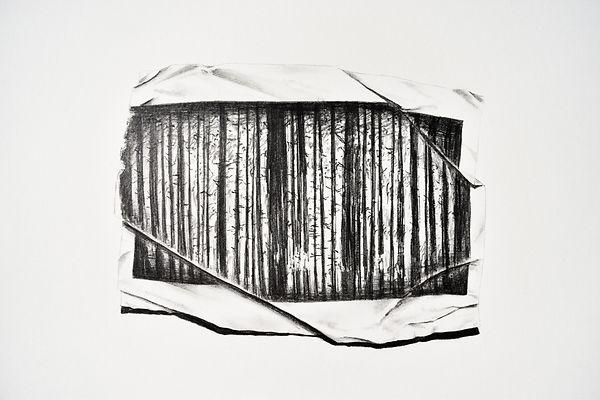 Forest, 2020, Graphite et crayon sur pap