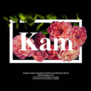 Kam_Bains_Flower_Frame.jpg
