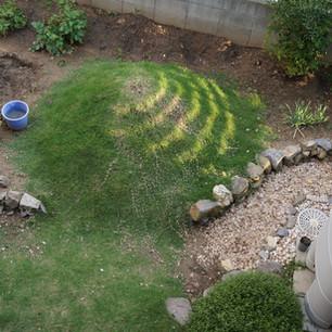 芝生のある庭