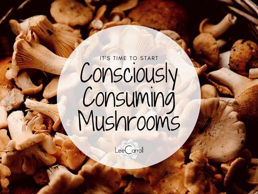 Consciously Consuming Mushrooms