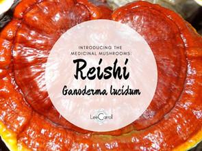 Introducing... Reishi!