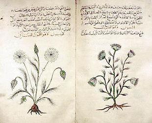 Dioscorides's 1st century De materia med