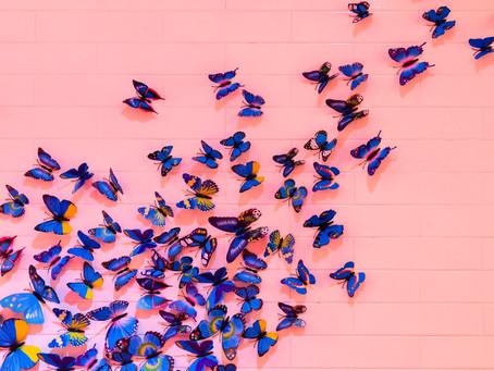 #TogetherWe Fly