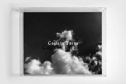 Cogli La Forza  by Yuri Catania