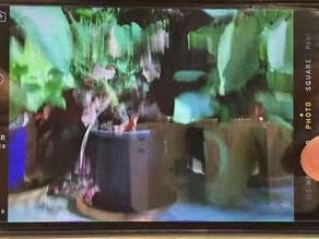 【iDeology 手機維修】iPhone 光學防手震故障導致後鏡頭拍攝畫面抖動