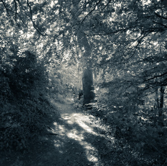 Welton Vale - Lincs