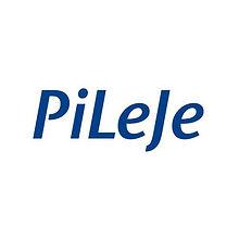 Pileje-villard-de-lans.jpg