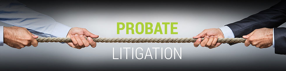 Probate-Litigation-Hero.jpg
