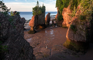 Hopewell Rocks, Bay of Fundy shutterstoc