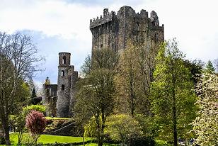 Irish castle of Blarney (shutterstock).j