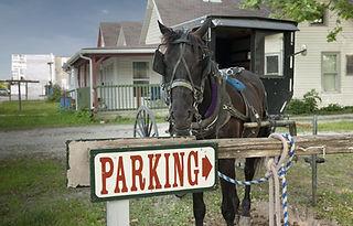 Amish shutterstock_105005114.jpg