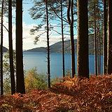 Loch Lomond, Scotland shutterstock_16255