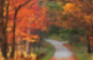 Vermont countryside road during autumn s