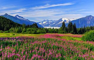 Alaska Scenery shutterstock_342932288 sm