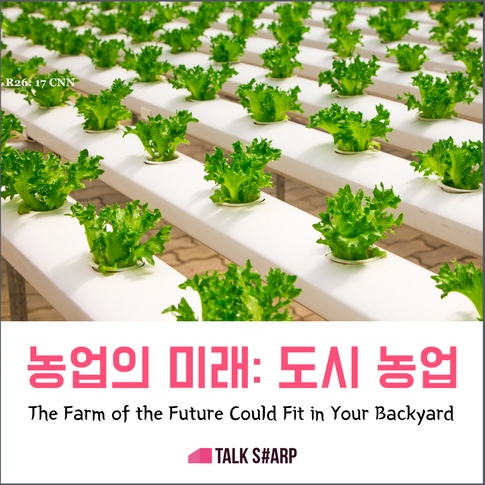 농업의 미래-Vertical Farm