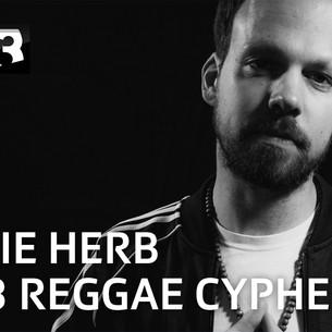 Am SRF 3 Reggae Cypher