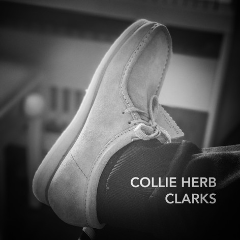 Collie Herb - Clarks