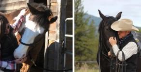 Therapy & Horsemanship