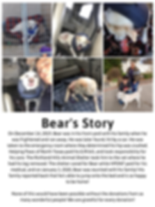 Bear's Story.png