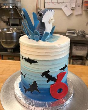 BH Cake 11.jpg