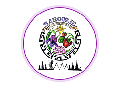 Sarcoxie Logo Network.png