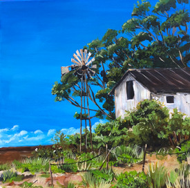 South African Windmill #1