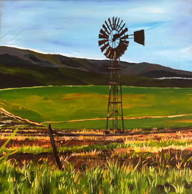 South African  Windmill #2